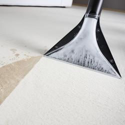 Carpet-Cleaning-250x250